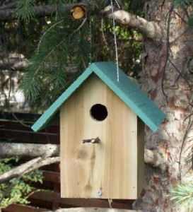 2 dollar bird house